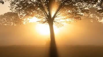 Wetter: Nebel am Morgen,  heiter bis wolkig am Tag