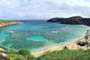 paradies-inseln im pazifik - weit weg, aber wunderschön: das sind hawaiis traumstrände