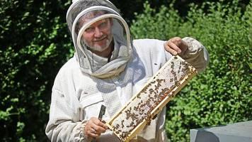 Honigernte in NRW: schwaches Frühjahr,  guter Sommer