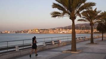 News von heute : Frau auf Mallorca von Palme erschlagen