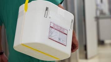 krankenkasse: 377 rheinland-pfälzer warten auf spenderorgan