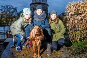 schutz für kinder: hundeverbot in pankow: im streitfall kommt die polizei