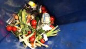Lebensmittelverschwendung: Verfassungsbeschwerde gegen Strafbarkeit von Containern eingereicht