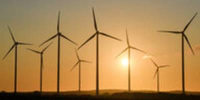 Die Grünen im Osten: Weniger inhaltliche Enge