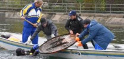 Putzaktion in Zürich: Taucher fischen Velos und eine Waffe aus der Limmat