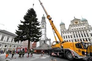Der Christkindlesmarkt kann kommen – der Augsburger Christbaum ist schon da