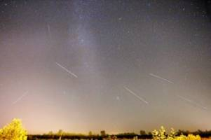 Nachthimmel: Leoniden: So sieht man den Sternschnuppen-Schauer am besten