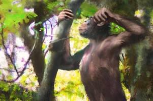 der Ötzi lockt hunderttausende touristen an. sensationsfund udo auch?