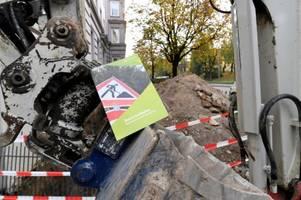 stadt will mit strengeren vorschriften gegen baumfrevel in augsburg vorgehen