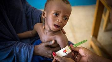 Trotz Bundeswehr-Einsatz - Islamismus,  Dürre und Hunger: Der Sahelzone droht die Krise