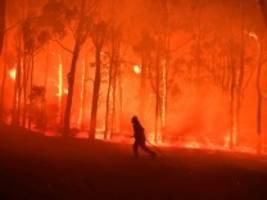 verheerende waldbrände in australien: es riecht, als säße ich mitten in einem lagerfeuer