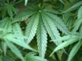 Anwalt muss sich wegen Drogenschmuggel verantworten
