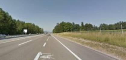 Polizeimeldungen Ostschweiz: Frau fährt auf Autobahn in mehrere Wildschweine