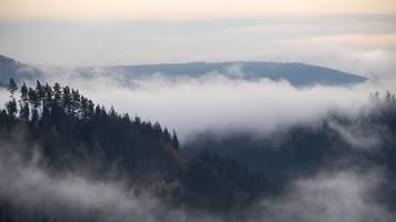 Wetter im Südwesten: Nebliger Start in die Woche