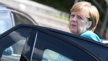 mecklenburg-vorpommern: gefangen zwischen wildzaun und autobahn – damhirsch bremst merkel-limousine aus