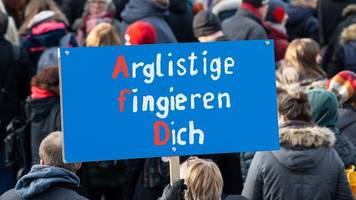 Über 20 000 Menschen protestieren gegen AfD in Braunschweig