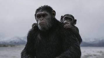 Planet der Affen: Disney eröffnet das Affentheater