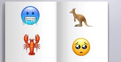 wegen pisa – schulbücher jetzt mit emojis statt wörtern