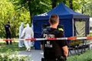 bundesanwaltschaft übernimmt ermittlungen - kopfschuss-mord in berlin: was wir bisher wissen - und was nicht