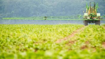 Heutige Bayer-Tochter: Kritik an Monsanto wegen Finanzierung von Glyphosat-Studien