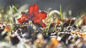 sonne und frost in bayern