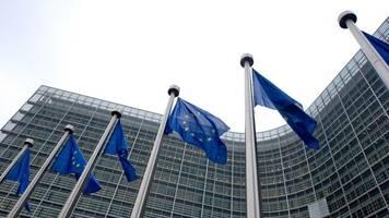 Vor Ukraine-Gipfel: Europäische Wirtschaft fordert Abschaffung der Russland-Sanktionen