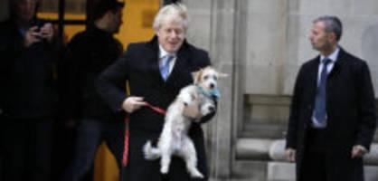 Parlamentswahl: So stehen die Chancen für Johnson und Corbyn
