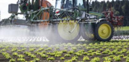 Pflanzenschutzmittel: Chlorothalonil ist ab sofort verboten