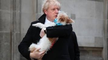 Großbritannien im Newsblog –  Boris Johnson herzt seinen Hund nach der Wahl