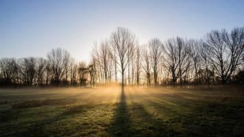 mix aus nebel und wärmender sonne zum start ins wetterjahr