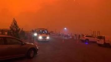 buschbrände in australien: hilflos im roten nebel