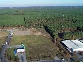 geplante fabrik in brandenburg: tesla bekommt gelände wohl zu spottpreis