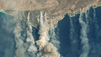 extreme hitze und starker wind: buschfeuer in australien vereinen sich zu mega-brand