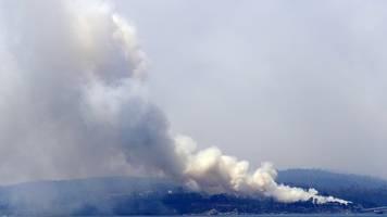 bedrohlich schlechte luft - arzt zu buschbränden: rauch und hitze immense gefährdung