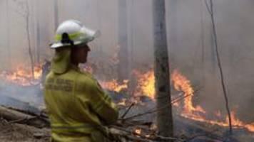 Feuer in Australien: Größter Buschbrand unter Kontrolle