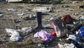 Iran: Passagierflugzeug wurde offenbar von zwei Raketen getroffen