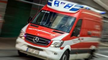 wildwechsel auf landstraße: autofahrer schwer verletzt