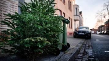 Dreiste Aktion: Dieb pflückt Geldspenden von ausgemusterten Weihnachtsbäumen – Feuerwehr reagiert cool