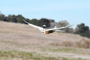 Roboter mit echten Taubenfedern kann fliegen