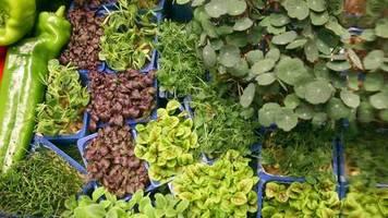 Messe öffnet für Besucher: Grüne Woche steht im Zeichen der Nachhaltigkeit