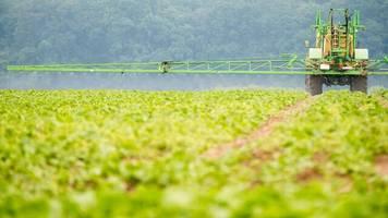Bayer: Glyphosat-Klagen: Mediator hofft auf raschen Vergleich