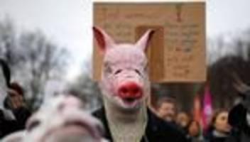 Landwirtschaft: Zehnte Wir haben es satt!-Demonstration in Berlin