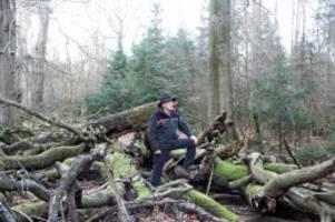 Segeberger Geheimnisse: Naturwald Buchholz – Der Urwald im Segeberger Forst