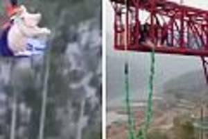 vorfall in china - freizeitpark-mitarbeiter werfen schwein für eröffnung aus 70 metern an seil in die tiefe