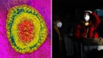 Coronavirus: Die Angst vor der nächsten Pandemie