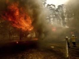 buschbrände in australien: löschflugzeug abgestürzt - drei tote