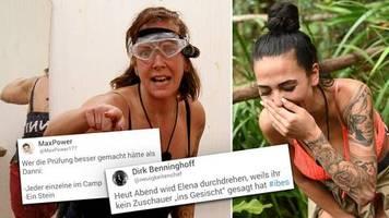 IBES-Reaktionen: Männertränen und Dannis Versagen – doch die Zuschauer fürchten sich vor Elena
