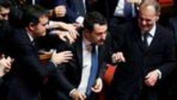 italien: immunität von lega-chef salvini aufgehoben