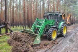 us-elektroautobauer: umweltministerium: tesla darf für neues werk roden