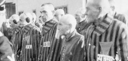 die vergessenen opfer des nationalsozialismus
